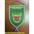 Вымпел с эмблемой Центрального таможенного управления ФТС России