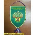 Вымпел с логотипом Московской таможни ЦТУ ФТС