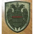Шеврон Федеральной службы охраны с липучкой на моховский камуфляж
