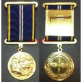 Медаль Во славу авиации