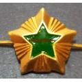 Звезда на погоны ФССП 20 мм